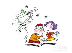 蚊虫叮咬红肿怎么办?