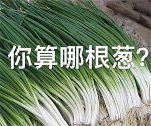 你算哪根葱是什么意思