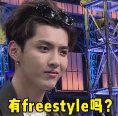 freestyle是什么意思
