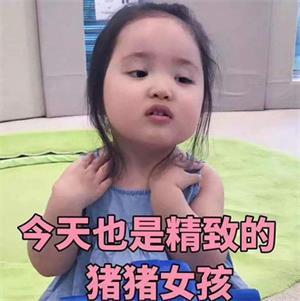精致女孩是什么意思,精致的猪猪女孩
