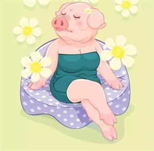 猪猪女孩是什么意思