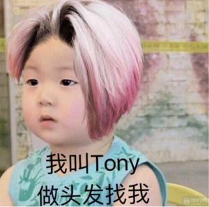 托尼老师是什么意思